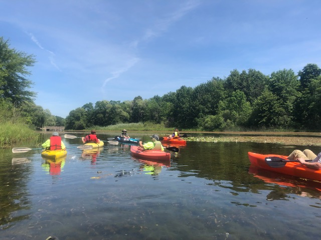linden-mill-pond-paddle-2019-07